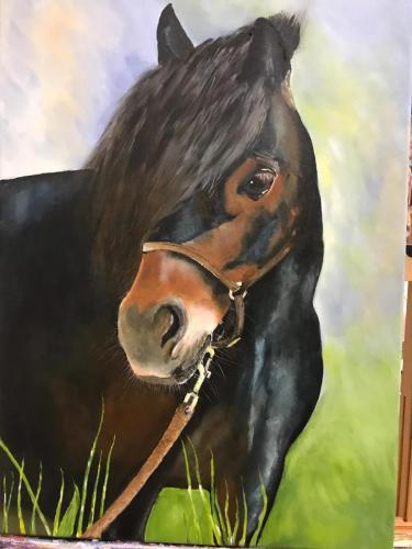 Paard 80 x 40 acryl